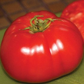 Delicious Heirloom Tomato Seeds  Non GMO