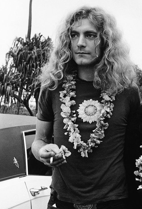 robert plant photographed recently - 500×736