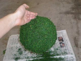 Mrs. Lemonade's DIY Moss Balls :  wedding diy reception decor 5rolli
