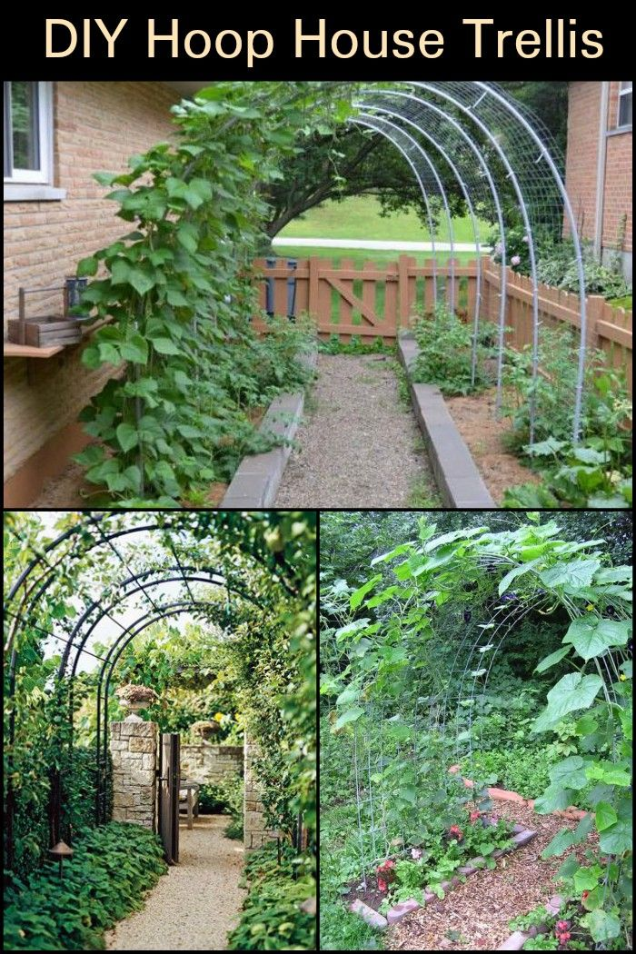 Diy Hoop House Trellis With Images Diy Garden Trellis Diy