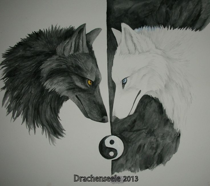 17 best Jing jang images on Pinterest  Yin yang Drawings and