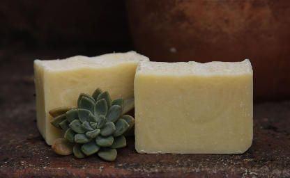 Camping Insect Repellent Soap