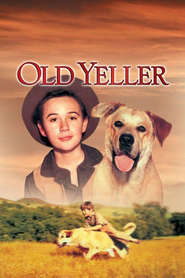 Best 25 Old Yeller Ide S P Terest B Popc N Im Ge Disney