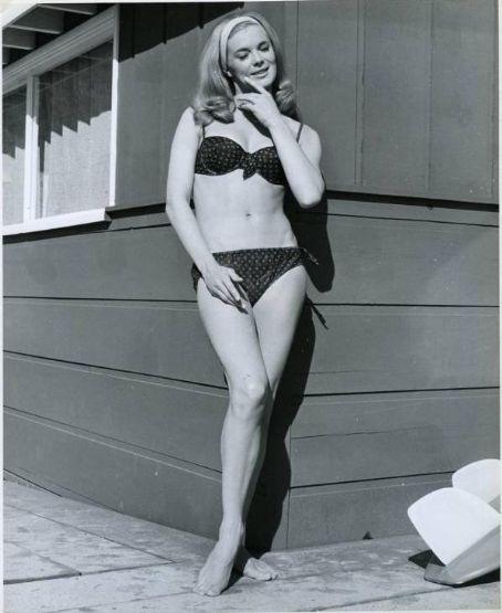Picture of Linda Evans