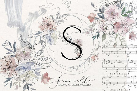 Sensuale Watercolor Floral Clipart - Illustrations