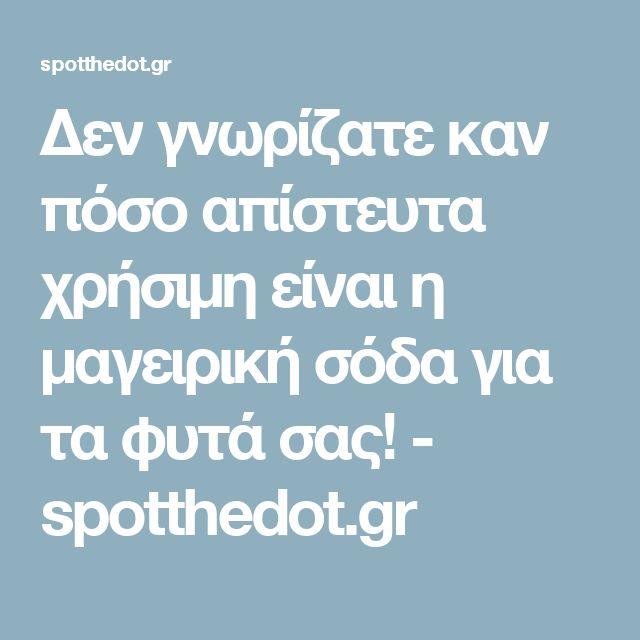 Δεν γνωρίζατε καν πόσο απίστευτα χρήσιμη είναι η μαγειρική σόδα για τα φυτά σας! - spotthedot.gr