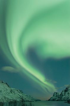Northern Lights, Norway. Photo by Hurtigruten.