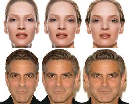 Facial anatomy and symmetry