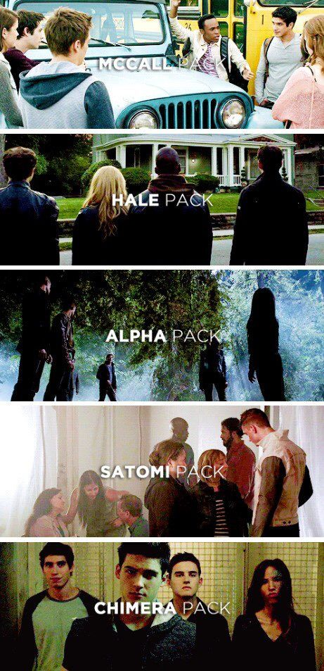 Teen Wolf - All the packs