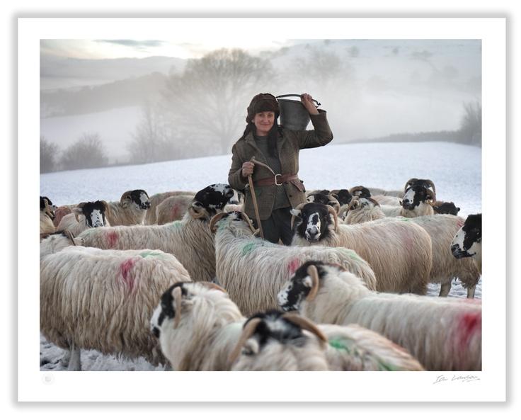 MID WINTER, Farm On The Hill, Howgills, UK
