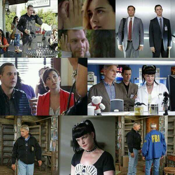 Whiskey Tango Foxtrot Movie Quote: 1353 Best NCIS (LOVE THIS SHOW) Images On Pinterest