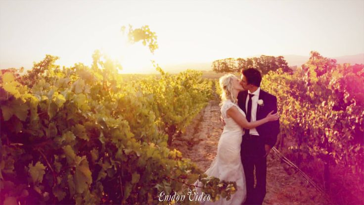 Sunshine and champagne! The wedding video highlights of Sheree & Glynn