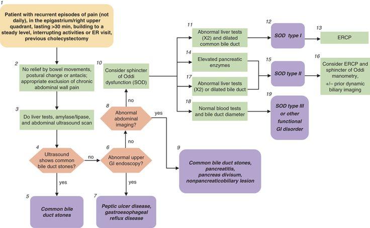Gallbladder Dysfunction Natural Treatment