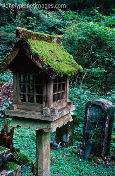 If I were a bird, I'd want to live here.