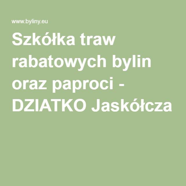Szkółka traw rabatowych bylin oraz paproci - DZIATKO Jaskółcza
