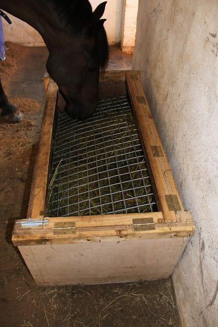 slow hay feeders for horses | Memeber of the 'Welshie ...