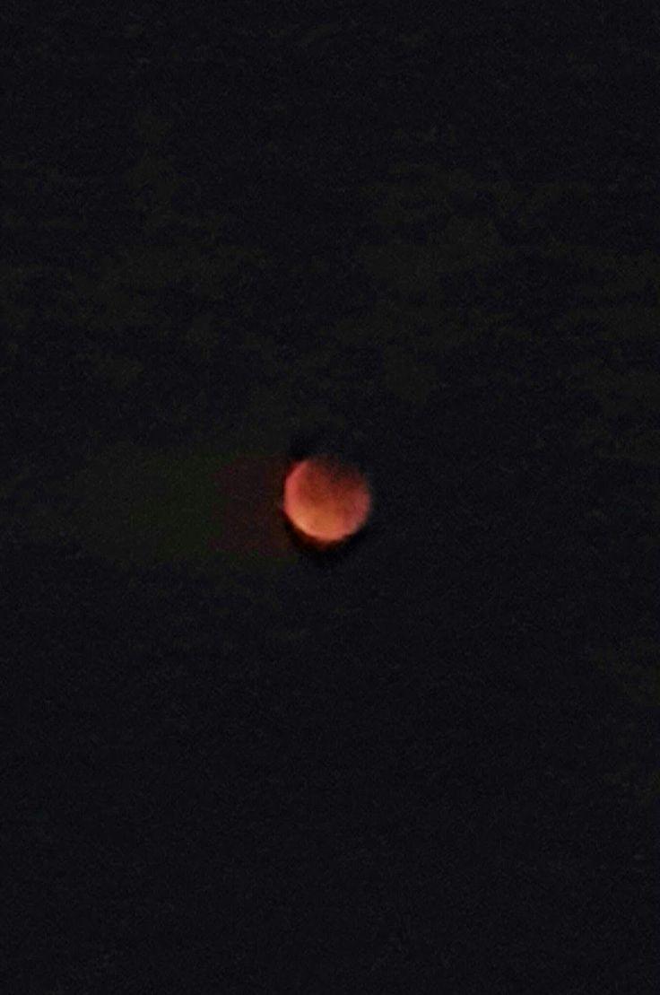my corner of the world: Blood moon