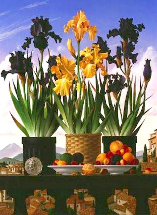 James Aponovich - Still Life with Bearded Irises, 2005
