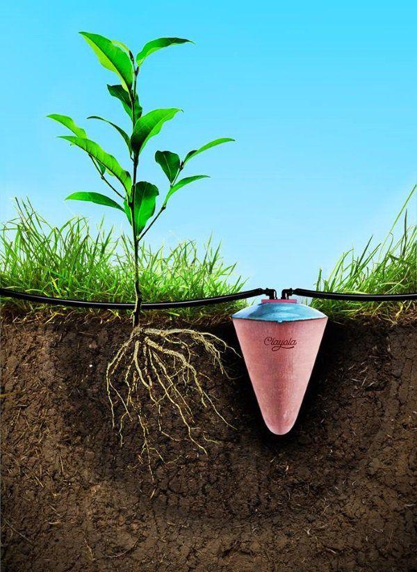 I vasi di terracotta che permettono di irrigare una sola volta in un mese (FOTO)