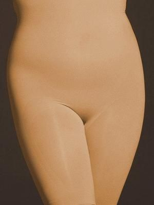 0d2ed6bb7249 The Catwalk High-Waist Long Leg Panty Shapewear (Beige) by BODYWRAP ...