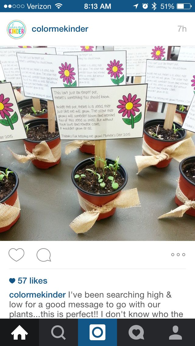 Seed in a pot- poem for Mothers or Father's Day