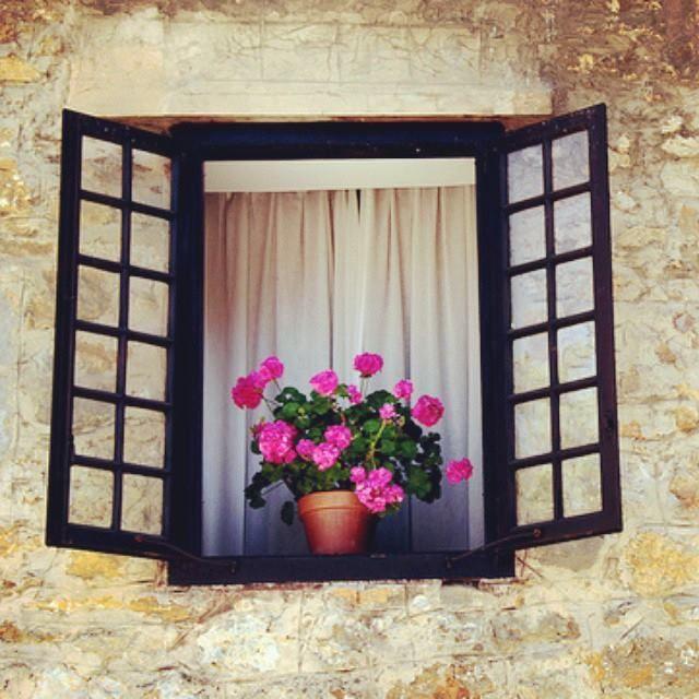 Abre las ventanas y deja que entre el sol. Abre tu negocio al mundo todo el tiempo mediante tu web. #web #negocioonline #app #appsnextworkinghome www.nextworkinghome.com