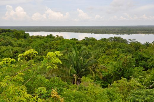 Rainforest Honeymoon Ideas - Belize