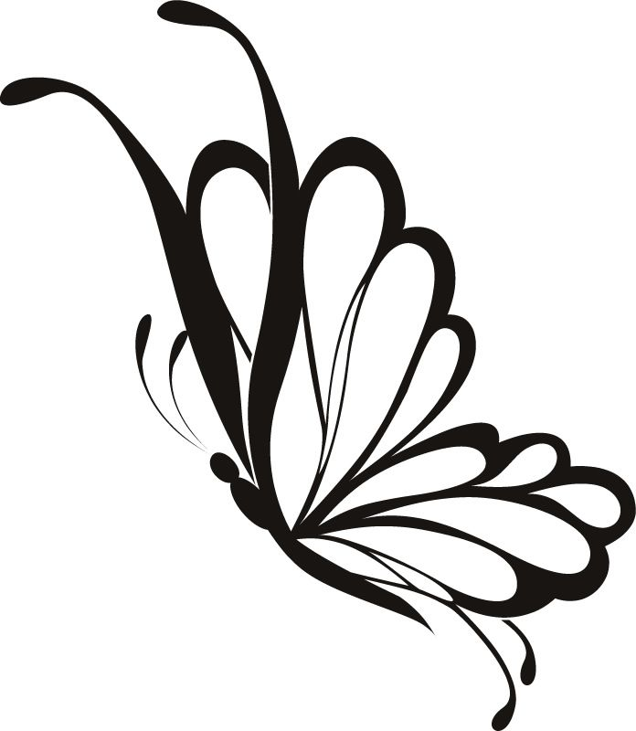 Simple Butterfly Drawing: Simple Flying Butterfly Drawing