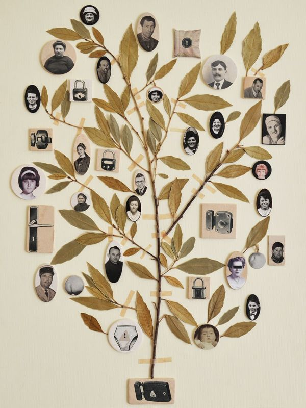 de 10 b sta id erna om arbre g n alogique p pinterest faire un arbre g n alogique mon arbre. Black Bedroom Furniture Sets. Home Design Ideas