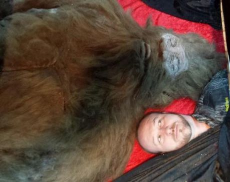 """Texas gives hunters permission to shoot Bigfoot  Texas officials have given residents the go-ahead to shoot Bigfoot -- if they can find him. """"We don't acknowledge that one exists. But if you wanted to shoot and kill a Bigfoot in the state of Texas, you would just need a hunting license,"""" said Maj. Larry Young, a game warden with Texas Parks and Wildlife"""