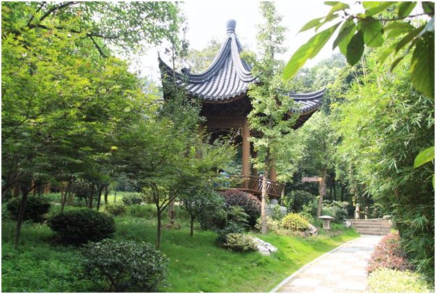 """To connect with #Hangzhou, #China, sign up on letstravelfriends.com and visit numerous historical sites and fascinating scenes around Wesk Lake. Hangzhou, a heaven on earth, has been a real treasure for visitors carrying unique culture and ethnicity.  Find your """"Travel Friend"""" today and see the world."""