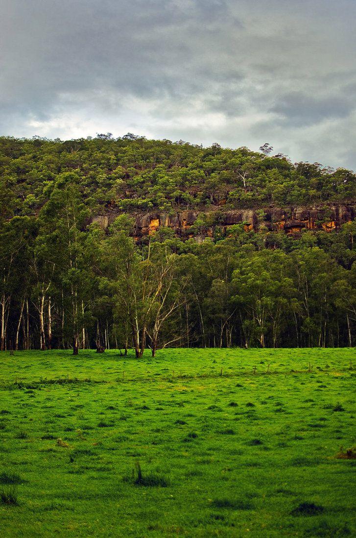 Farm near the colo river, Australia.