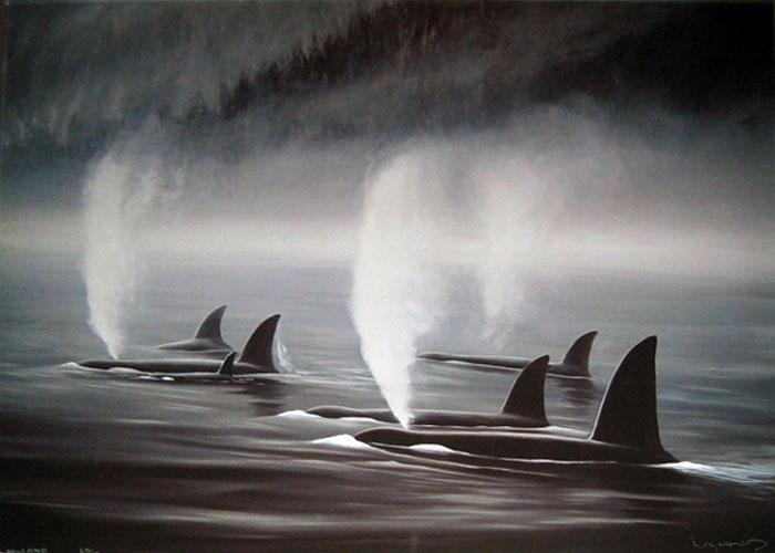 Image Detail for - Robert Wyland : Orca Mist - Art Brokerage
