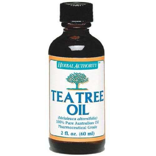 Can You Use Tea Tree Oil On Dogs For Fleas