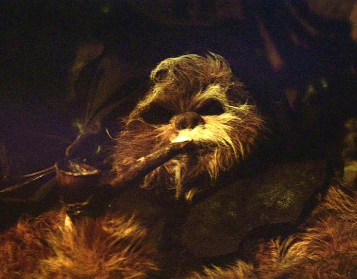 Image result for ewok hood pipe