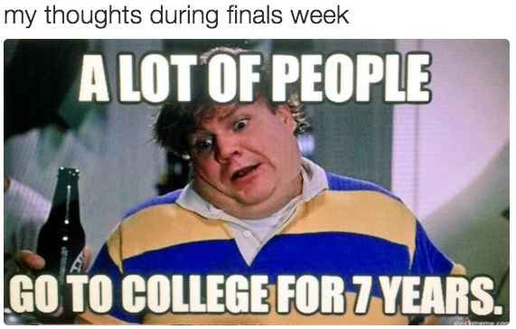 Funny Memes About Life Struggles: 24 Struggles Only People Who Have Gone Through Finals Week