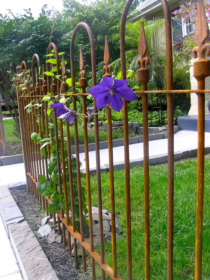 wrought iron fences timeless and beautiful