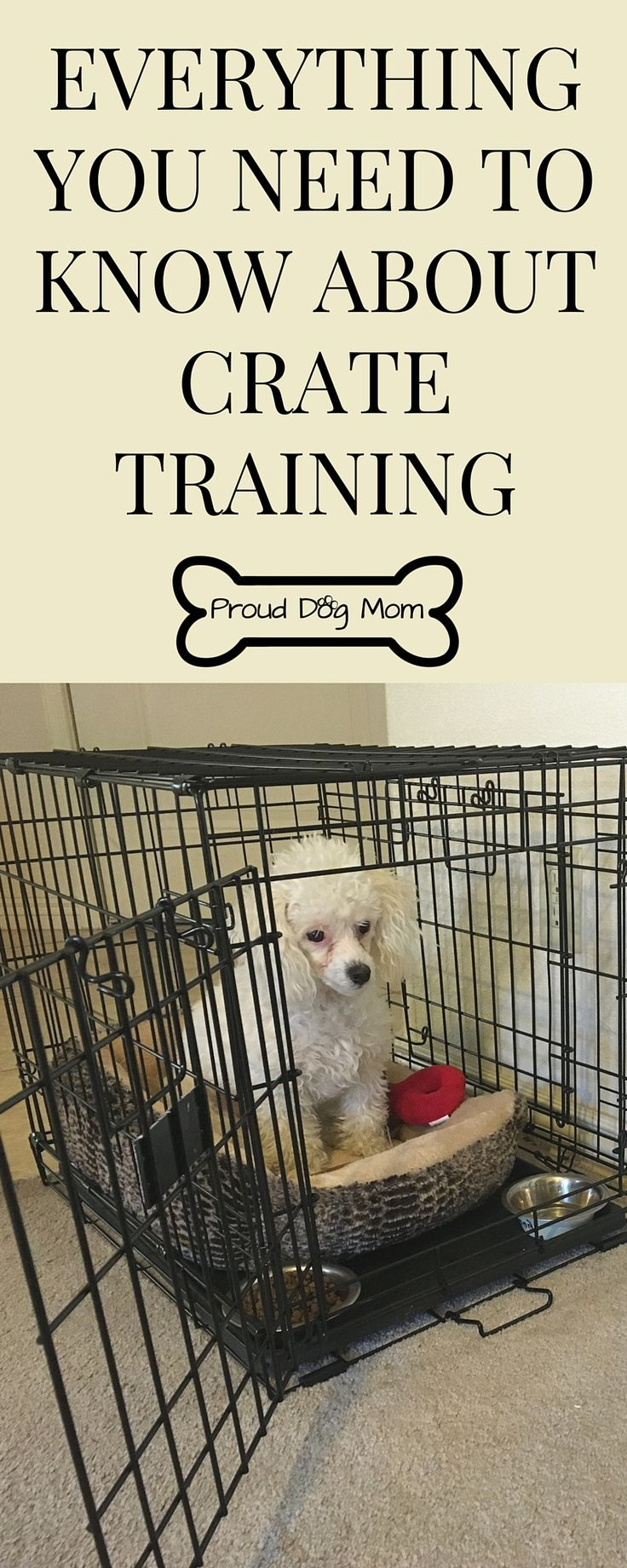 My Dog's Experience With The Crate. Plus, Everything You Need To Know About Crate Training | Dog Training Tips |