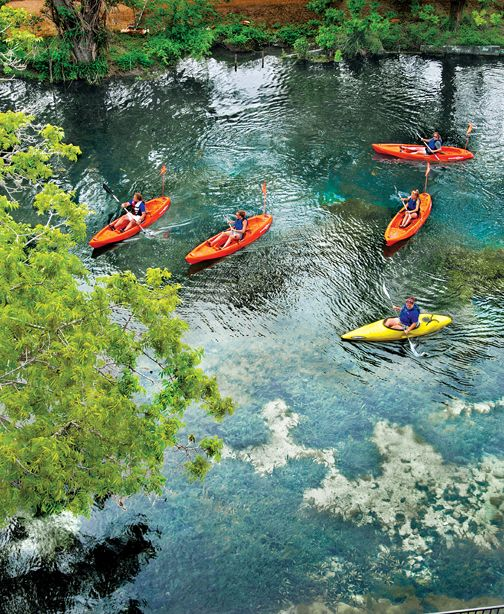 Glass-bottom kayaks are available for guided tours of Spring Lake at Aquarena Springs.