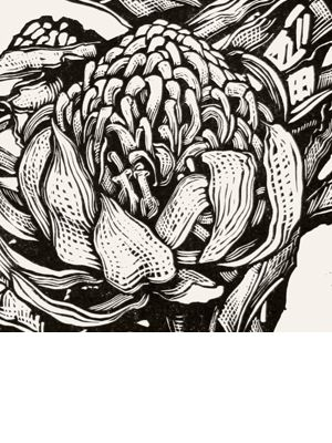 Andrew Crooks - Australian Artist