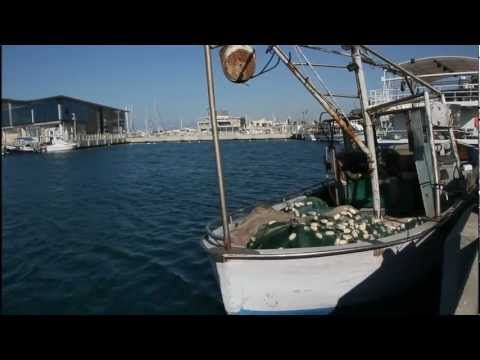 ▶ Canon 60D + Tamron 18-270mm - Sample HD Video - YouTube