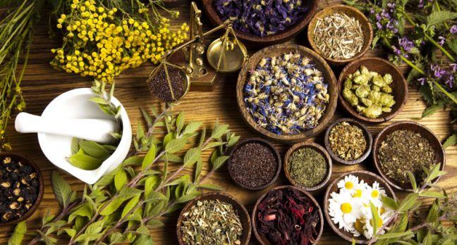 Obat Herbal Atasi Ejakulasi Dini