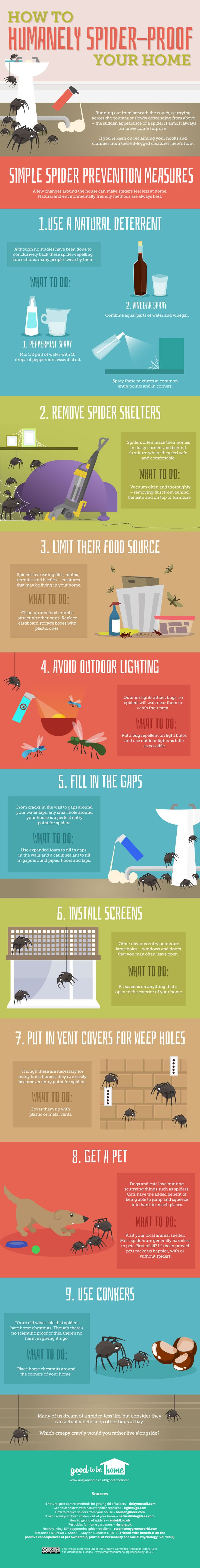 How to get rid of spiders from your home [infographic] | ecogreenlove ••• Brought to you by Anglian Home's Good to be Home