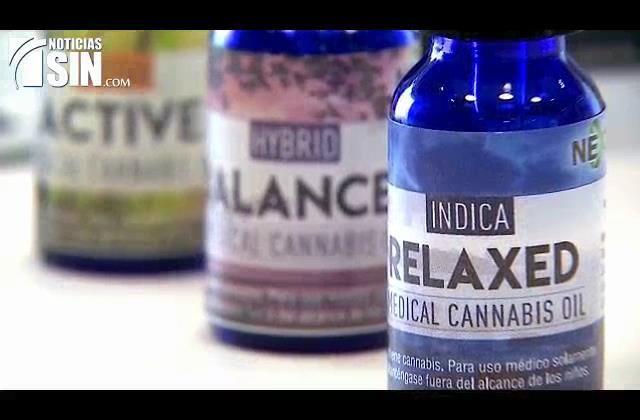Puerto Rico: Avalan proyecto de ley para regular cannabis medicinal