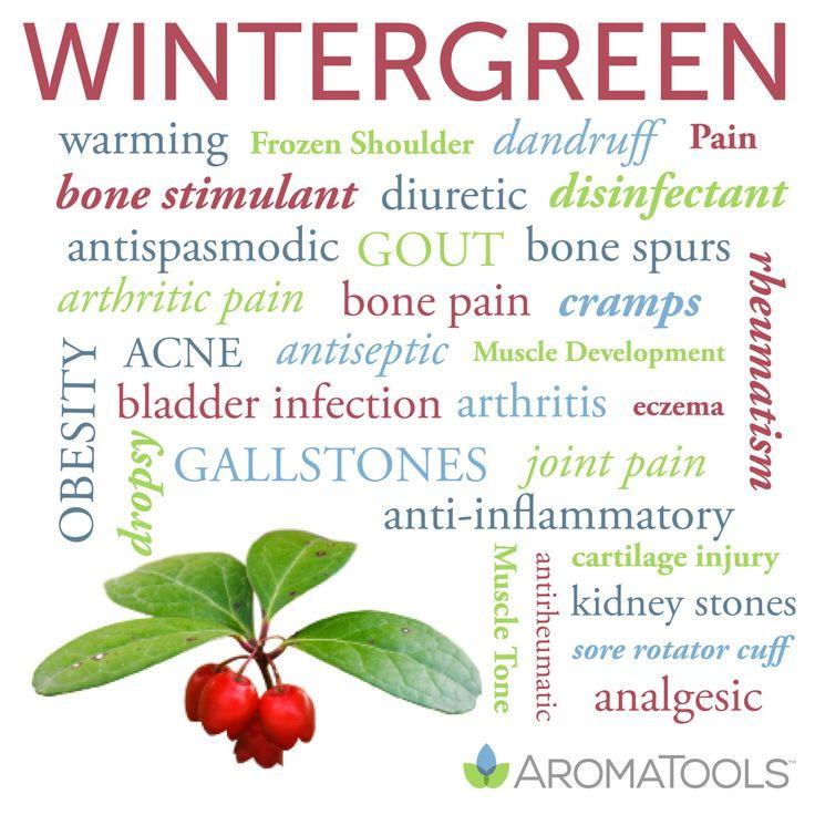 Wintergreen essential oil uses found in the Modern Essentials book