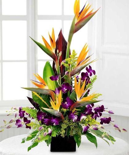 Birds in Paradise - Floral Arrangements - Beneva Flowers - gifts - Sarasota - Florida - 34238