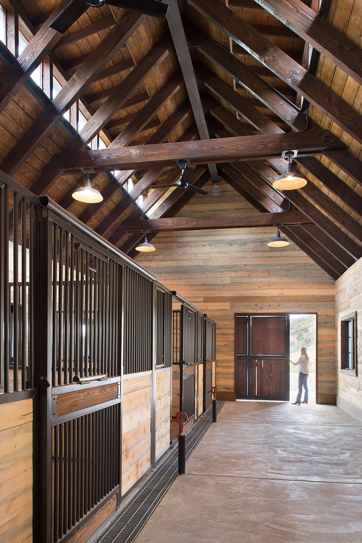Triple M Ranch | Land + Shelter