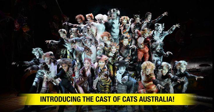 cats australian cast mungojerrie and rumpleteazer - Google Search