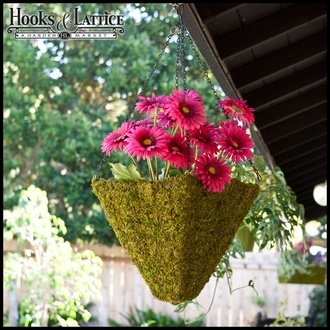 #unique hanging basket | green moss $44.85Unique Hanging, Attention Grab Baskets, Green Moss, Chains, Moss 44 85, Pyramid Hanging, Moss Pyramid, Moss Hanging, Hanging Baskets