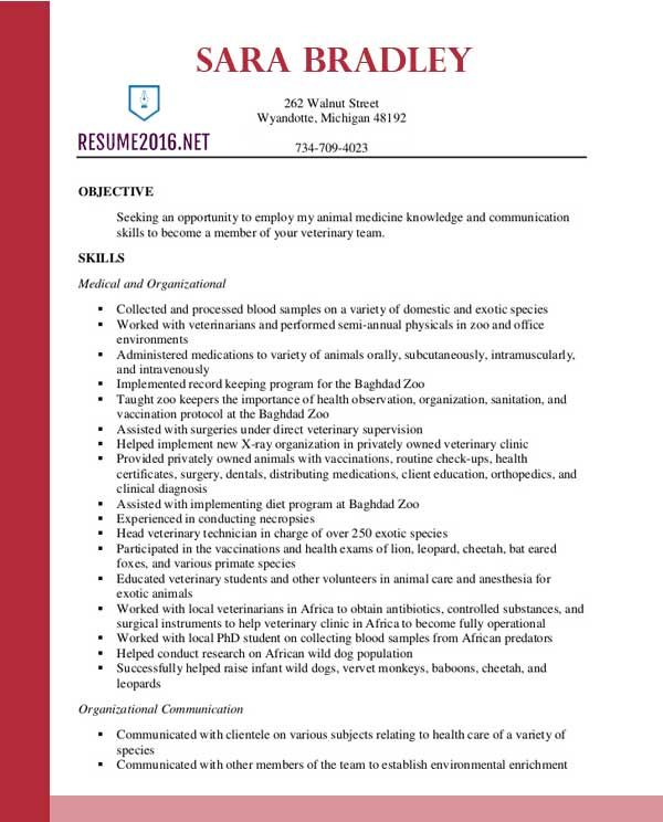 Best Resume Format 2016 Free small, medium and large images - format resumes